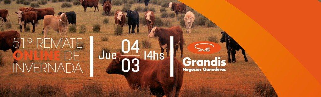 51 remate online de Grandis negocios ganaderos
