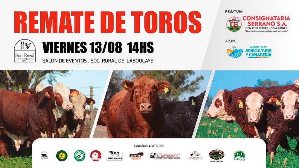 REMATE DE TOROS EN LABOULAYE CON PRE-OFERTA Y STREAMING EN CANAL GANADERO