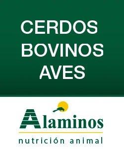 Banner Alaminos